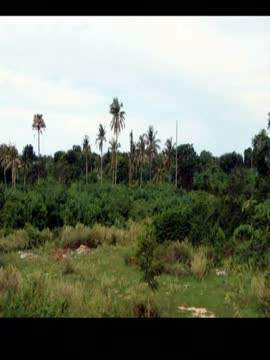 Land For Sale in Bhubaneswar